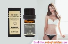 dionel 3