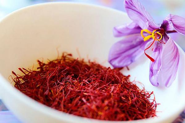 Không chỉ được trồng tại Iran, Saffron còn được trồng tại nhiều quốc gia khác như Trung Quốc, Ấn độ, Tây Ban Nha
